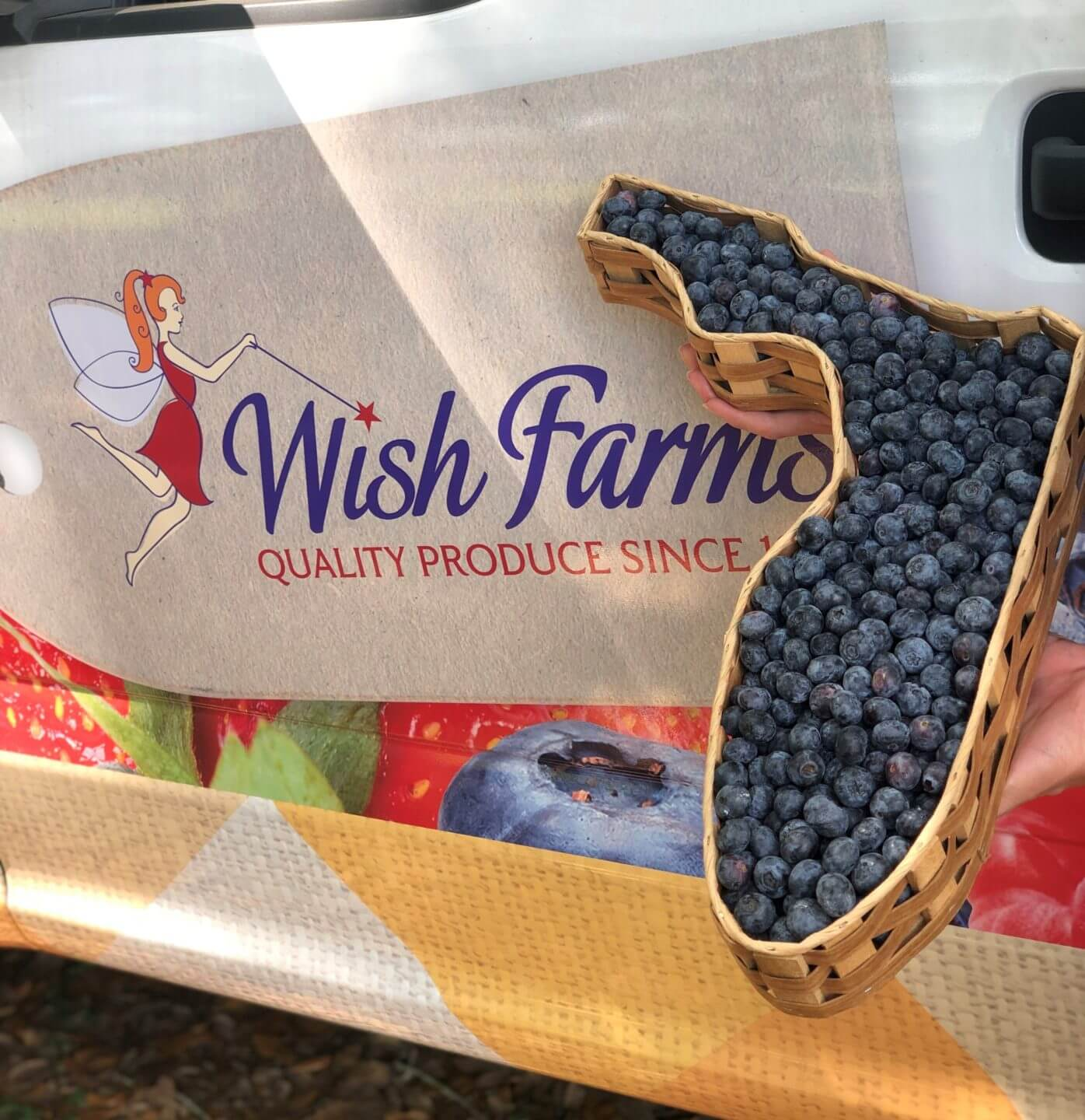 FL blueberry basket Wish Farms Truck