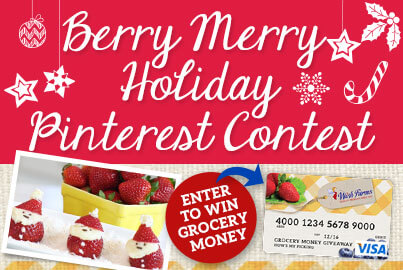 Berry Merry Holiday Pinterest Contest Wish Farms
