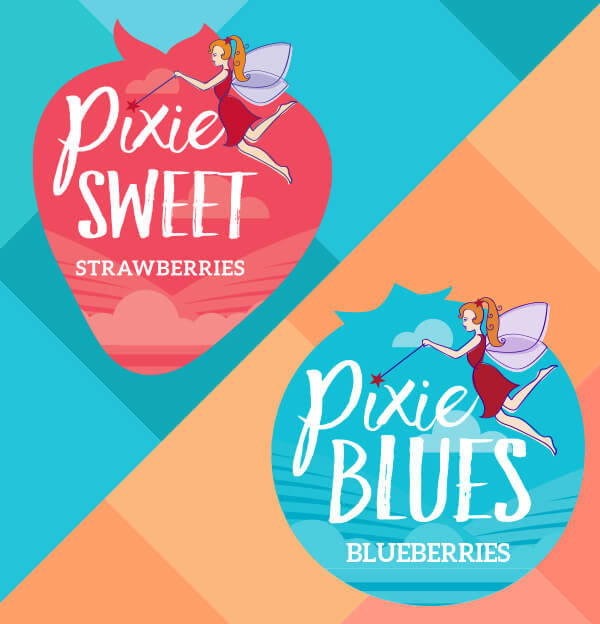 Pixie Sweet_Blues BAnner_Mobile